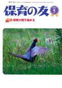 写真:保育の友(2019年5月号)表紙